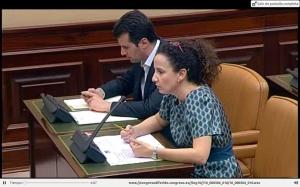 PILAR LUCIO Comision Defensa 18042013